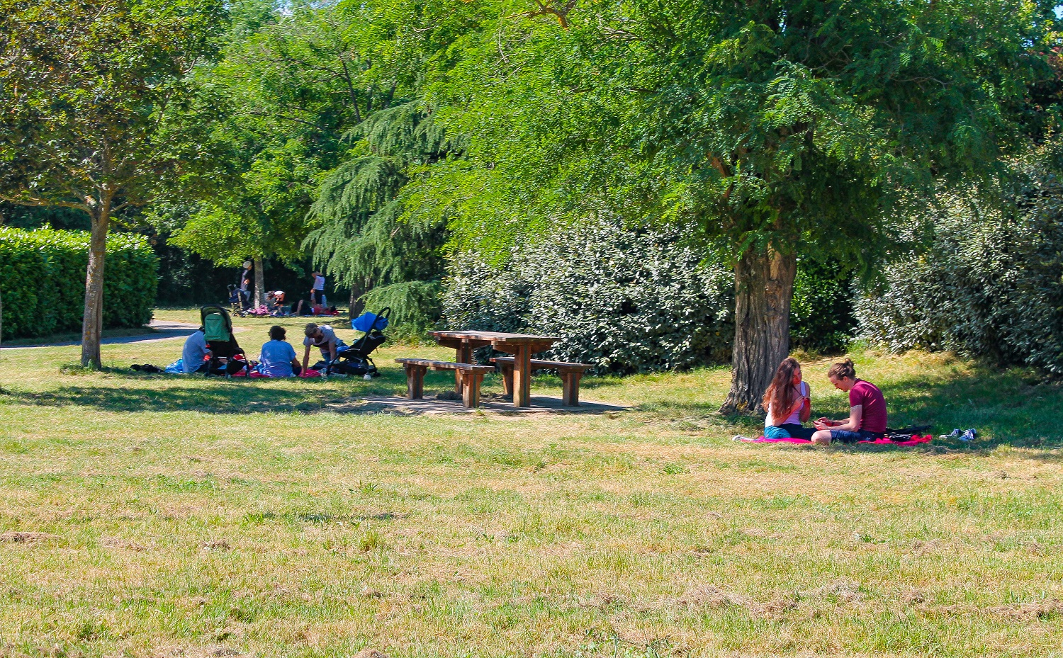 BOUCONNE OUTDOOR ACTIVITIES CENTER, MONTAIGUT-SUR-SAVE