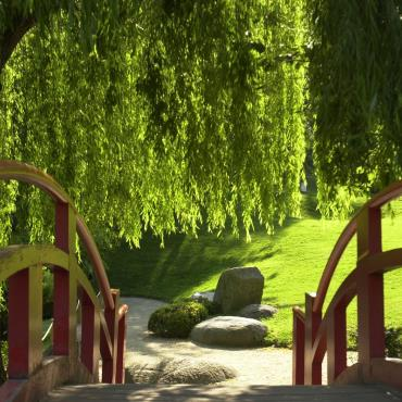 10 reasons to come to toulouse tourism in toulouse for Le jardin japonais toulouse