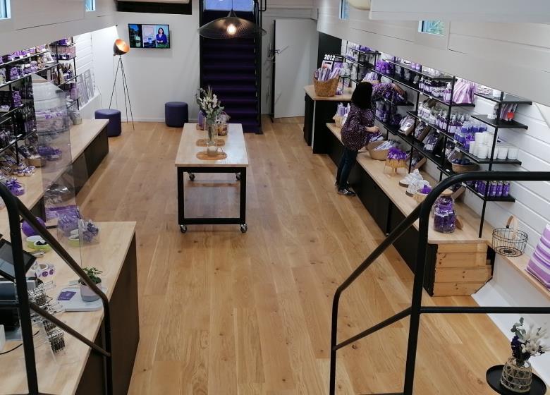 Maison de la violette0
