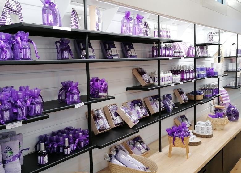 Maison de la violette1