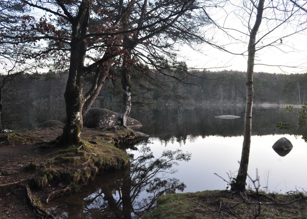 Rochers-du-Sidobre-randonnee-facile-lac-du-Merle