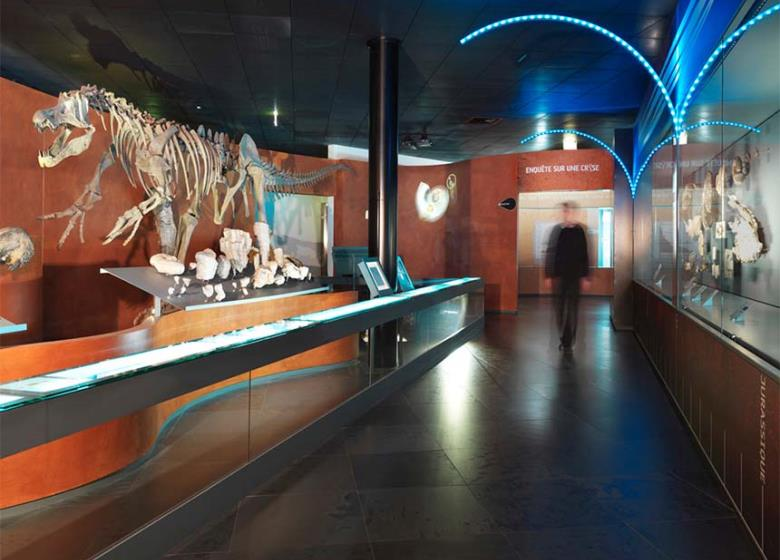 Visiter_Toulouse_Museum
