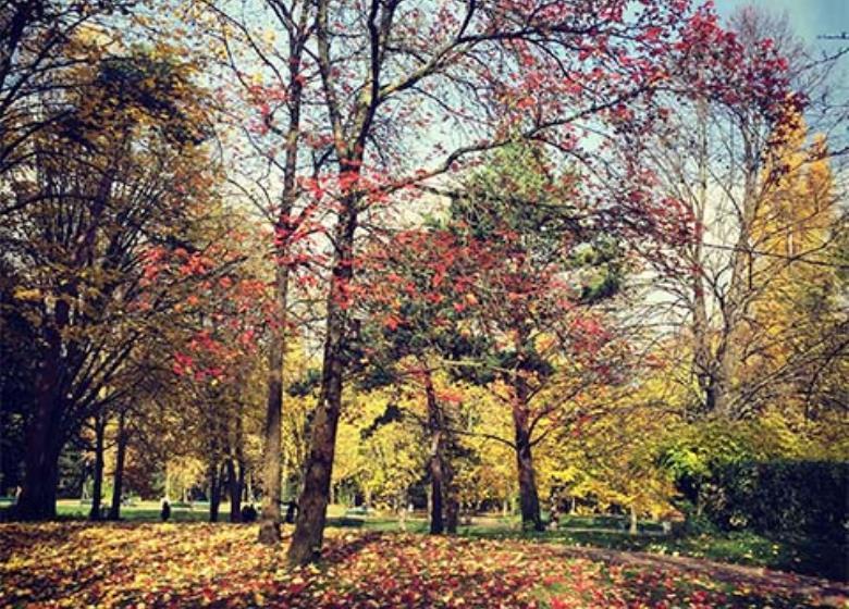 Visiter Toulouse - jardin Compans Caffarelli