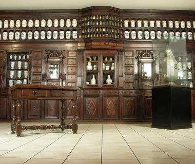 Visiter_Toulouse_musee_Paul_Dupuy_pharmacie